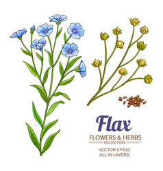 flax set vector image