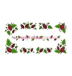 Raspberry line art vector image