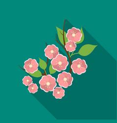 sakura flowers icon in flat style isolated on vector image