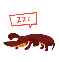 Sleeping adorable animal character isolated on vector