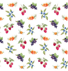 Watercolor berries pattern vector