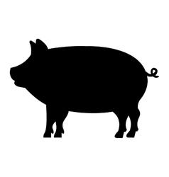pig animal farm icon vector image