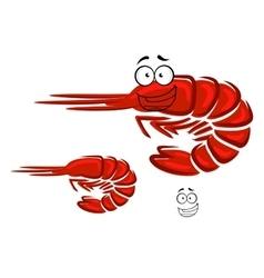 Happy cartoon red shrimp character vector image vector image