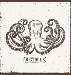 octopus engraving logo vintage black engraving vector image vector image