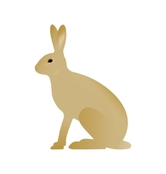 a hare vector image