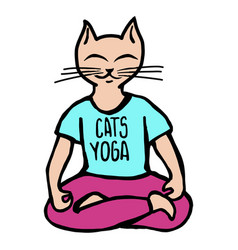 Cats yoga vector
