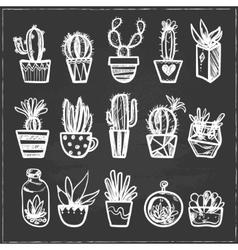 hand drawn set cactus in pots vector image