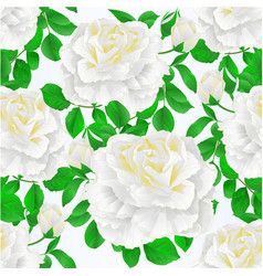 seamless texture white rose and leaves with buds vector image