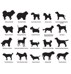 Set of dogs silhouettes-5 vector