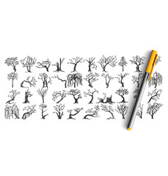 trees doodle set vector image