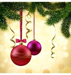 Christmas tree branch vector image