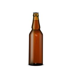 glass beer brown bottle on white vector image