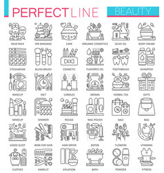 beauty spa cosmetic concept symbols perfect thin vector image vector image