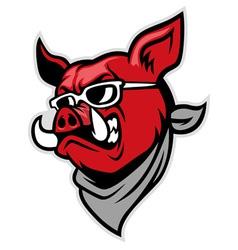 hog head wear a scarf vector image vector image