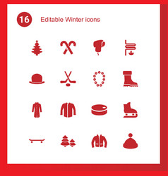 16 winter icons vector image