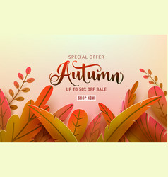 autumn thanksgiving background fall frame vector image