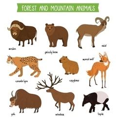 Forest and mountain animals isolated set vector