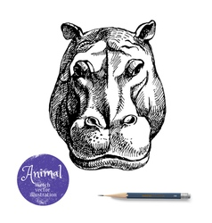 Hand drawn hippo animal Sketch isolated vector
