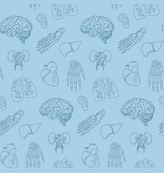 Human parts and organs pattern vector