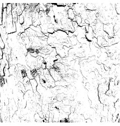 Monochrome grayscale texture vector