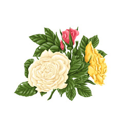 set pink yellow and white roses bouquets vector image