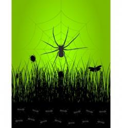 spider3 vector image