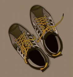 sport shoes vector image