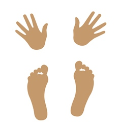 hand and foot silhouette vector image