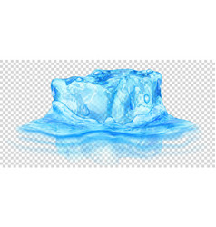 Ice cube in water vector