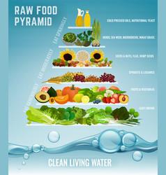 Raw food pyramid vector