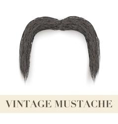 Realistic Black vintage drooping mustache vector