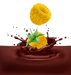 Yellow raspberries with chocolate vector