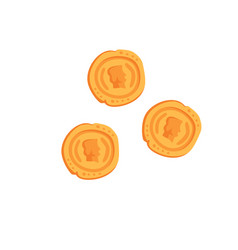 ancient roman gold coins on a vector image