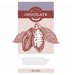banner with hand drawn cocoa beans vector image