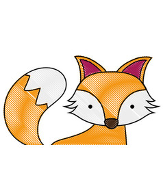 Grated adorable fox wild animal of the forest vector