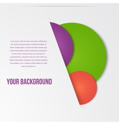 infographics circles template design vector image