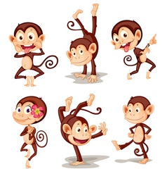 Monkey series vector