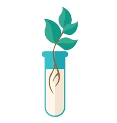 Chemical test tube with green plant vector image vector image