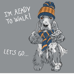 hipster dog English Cocker Spaniel vector image vector image