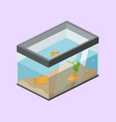 Aquarium with fish isometric vector