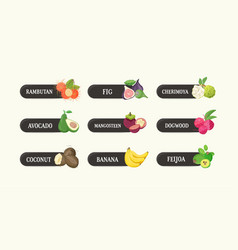Collection of labels with delicious ripe fresh vector