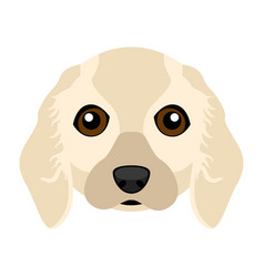 Cute cocker spaniel dog avatar vector