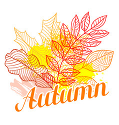 Floral background with stylized autumn foliage vector