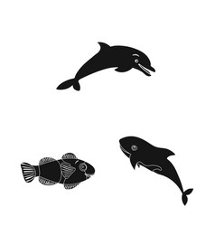 sea and animal icon vector image