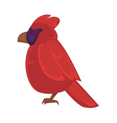 Big exotic red bird with violet face and brown vector