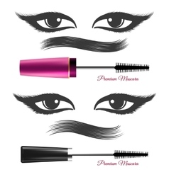 Demonstration mascara effects vector image vector image