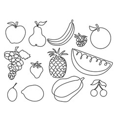 Abstract fruits one line drawing design vector