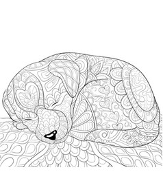 Adult coloring bookpage a sleeping little dog vector