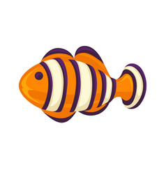 Anemone fish isolated on white clownfish in vector
