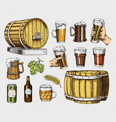 Beer glass mug or bottle wooden barrels vector